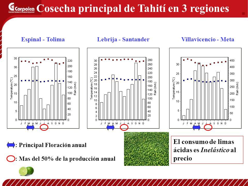 Espinal - TolimaVillavicencio - MetaLebrija - Santander Cosecha principal de Tahití en 3 regiones : Principal Floración anual : Mas del 50% de la prod