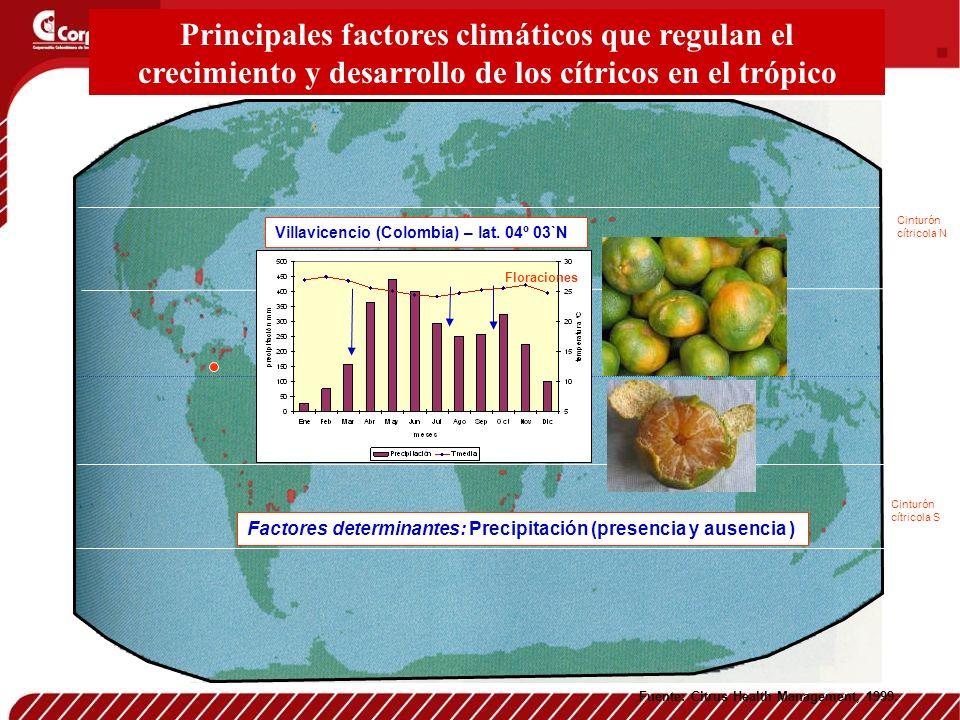 Fuente: Citrus Health Management, 1999. Cinturón cítricola N Cinturón cítricola S Principales factores climáticos que regulan el crecimiento y desarro