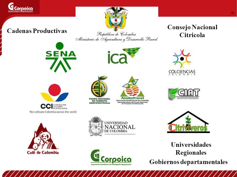 Universidades Regionales Gobiernos departamentales Consejo Nacional Citricola Cadenas Productivas