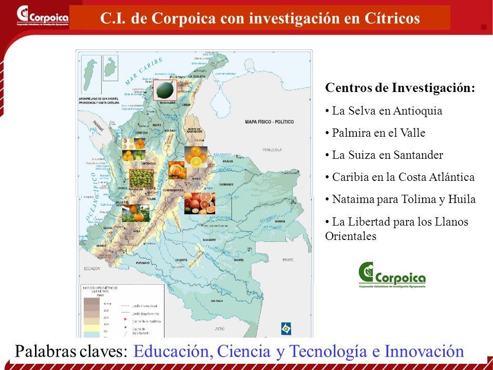 C.I. de Corpoica con investigación en Cítricos Centros de Investigación: La Selva en Antioquia Palmira en el Valle La Suiza en Santander Caribia en la