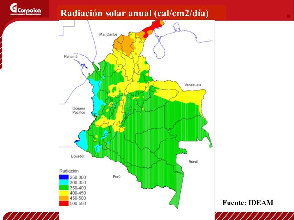 Radiación solar anual (cal/cm2/día)