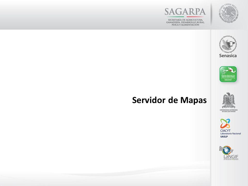 Servidor de Mapas