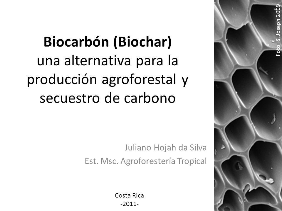 Biocarbón (Biochar) una alternativa para la producción agroforestal y secuestro de carbono Juliano Hojah da Silva Est. Msc. Agroforestería Tropical Fo