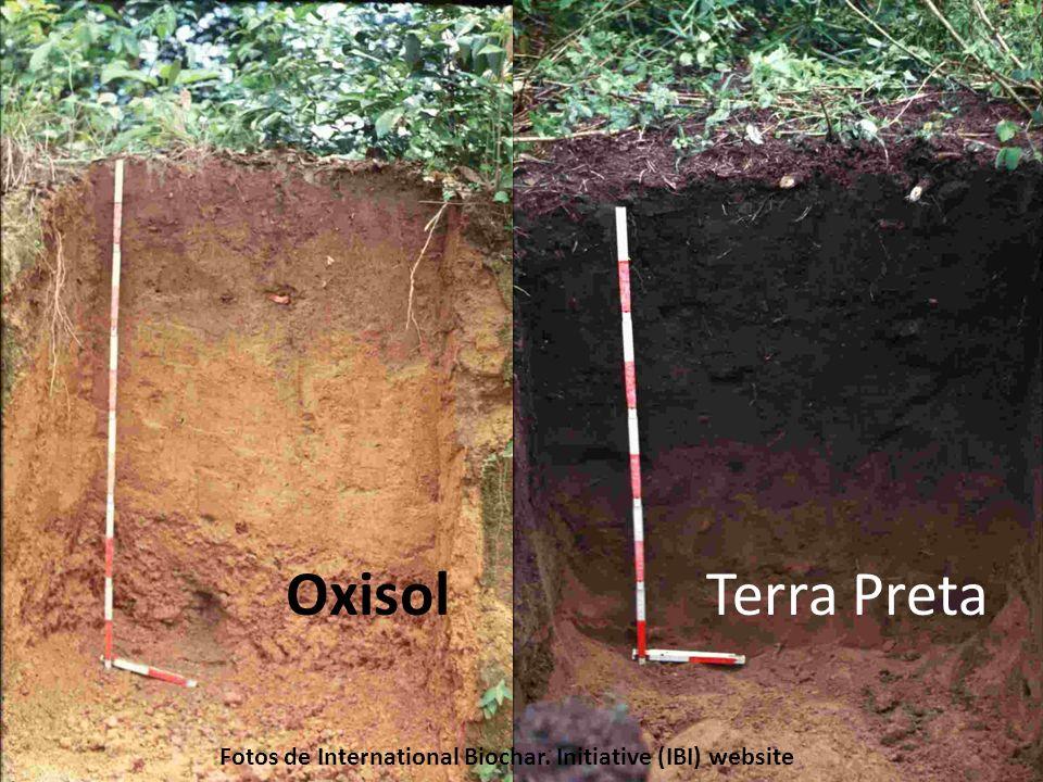 OxisolTerra Preta Fotos de International Biochar. Initiative (IBI) website