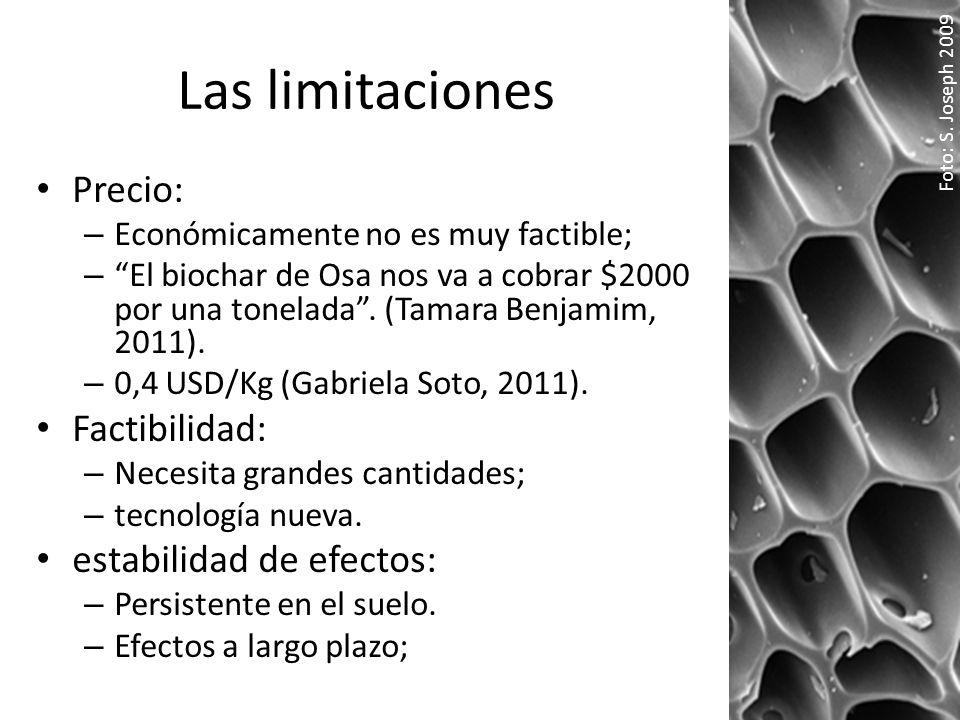 Las limitaciones Precio: – Económicamente no es muy factible; – El biochar de Osa nos va a cobrar $2000 por una tonelada. (Tamara Benjamim, 2011). – 0