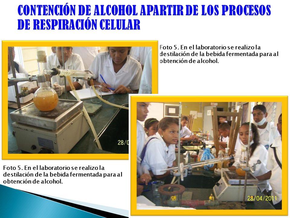 Foto 5. En el laboratorio se realizo la destilación de la bebida fermentada para al obtención de alcohol.