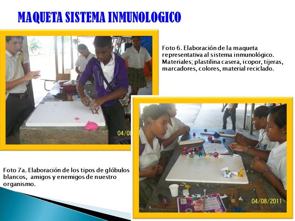 Foto 6. Elaboración de la maqueta representativa al sistema inmunológico. Materiales; plastilina casera, icopor, tijeras, marcadores, colores, materia
