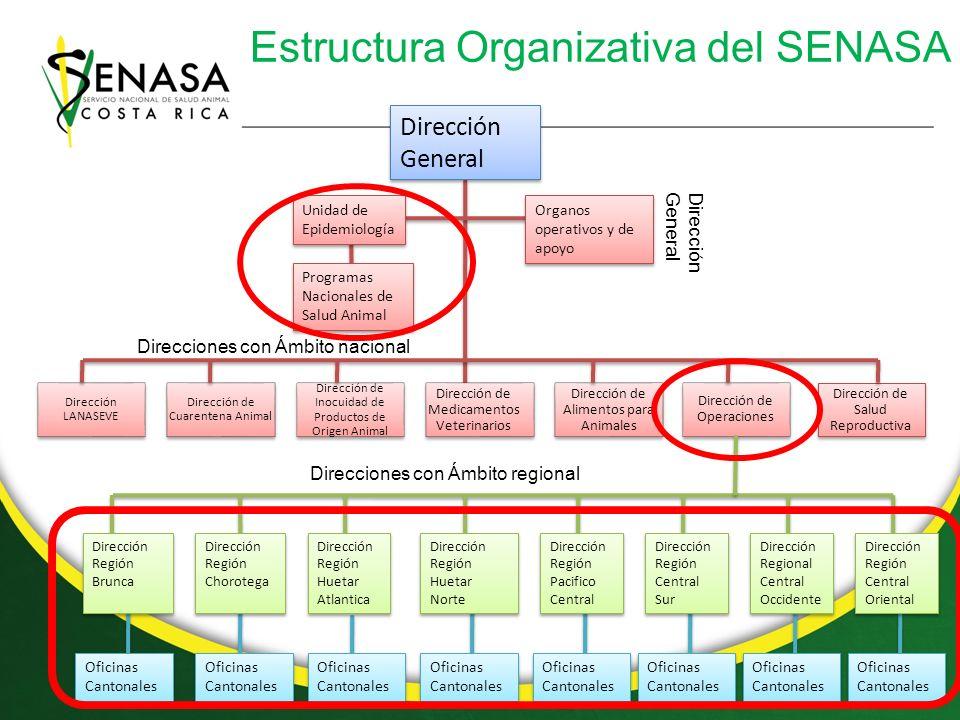 Programas Nacionales (PN) de salud animal con vigilancia Nombre del ProgramaCoordinador PN Sanidad AcuícolaDra.