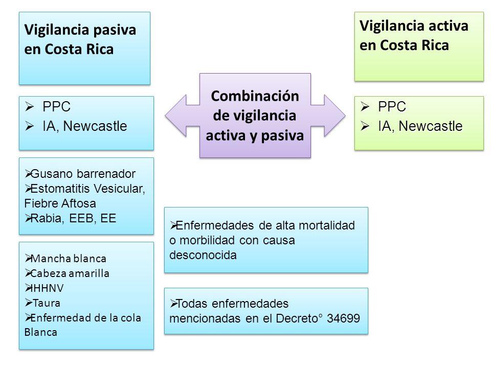 Ministerio de Agricultura y Ganadería Servicio Nacional de Salud Animal Tel.: (506) 2587.1600.