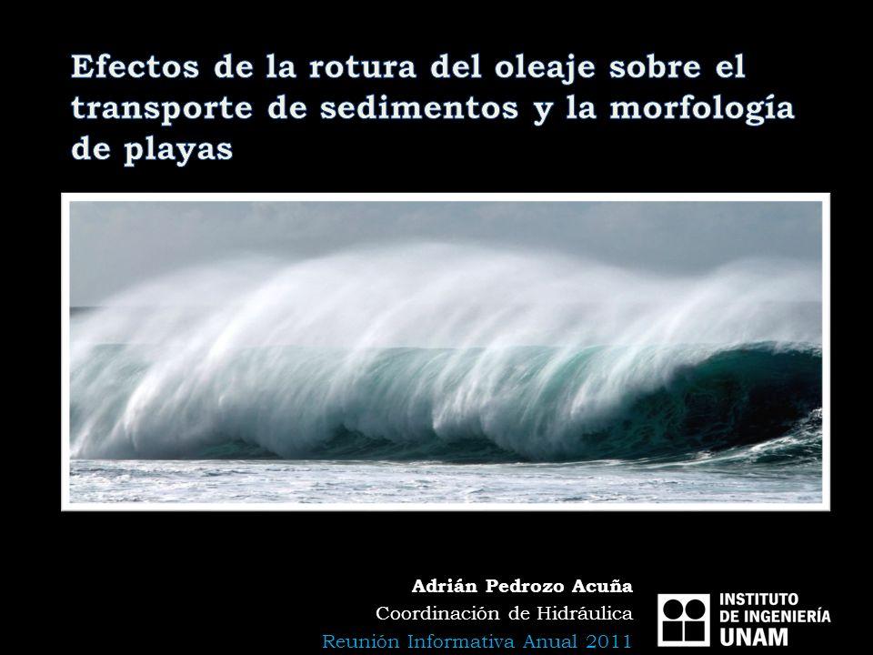 Adrián Pedrozo Acuña Coordinación de Hidráulica Reunión Informativa Anual 2011
