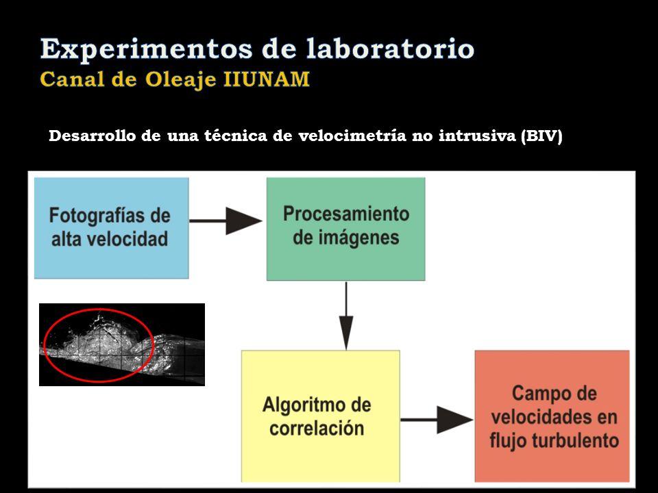 Desarrollo de una técnica de velocimetría no intrusiva (BIV)
