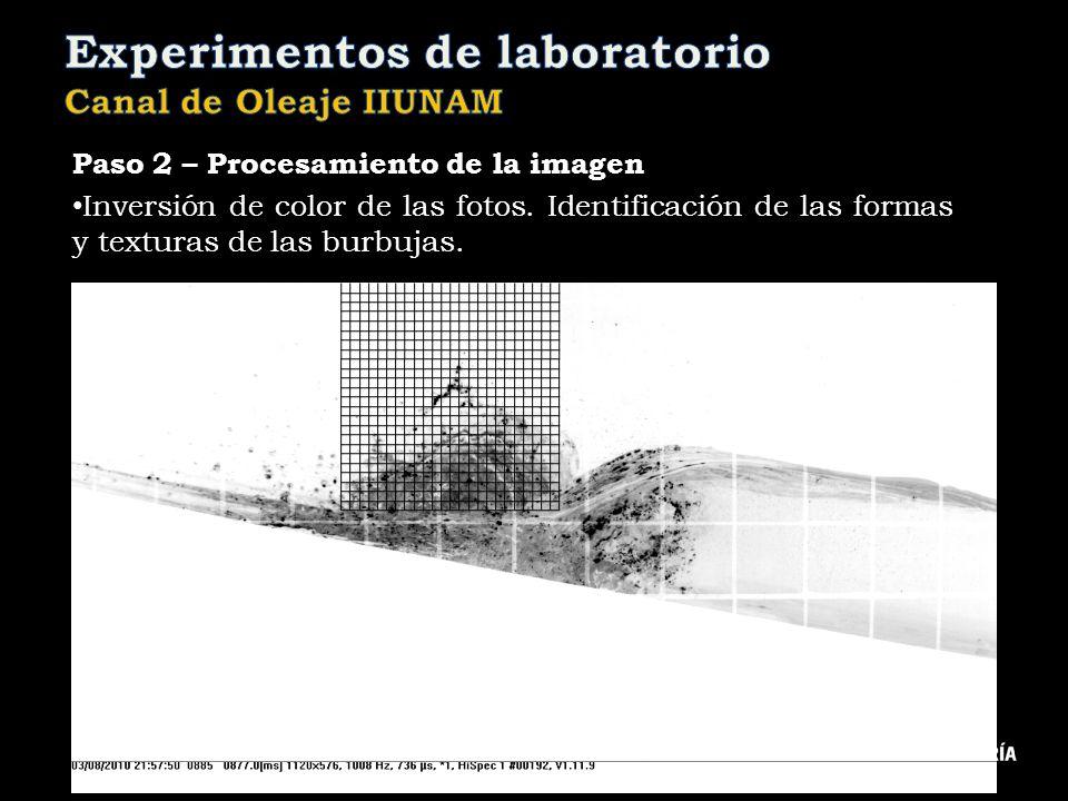 Paso 2 – Procesamiento de la imagen Inversión de color de las fotos. Identificación de las formas y texturas de las burbujas.