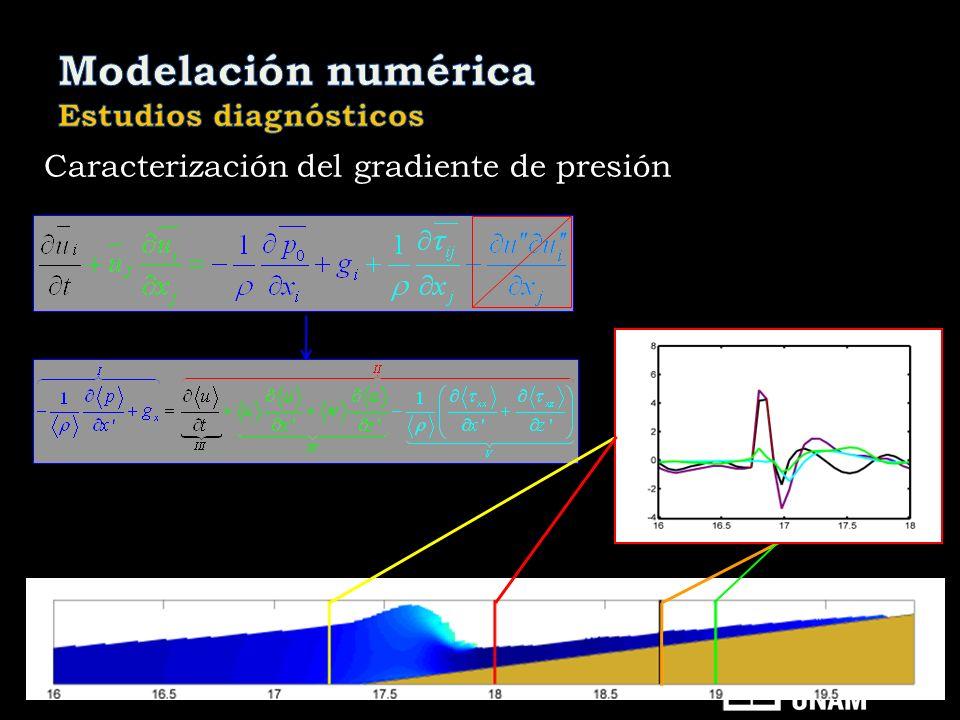Caracterización del gradiente de presión