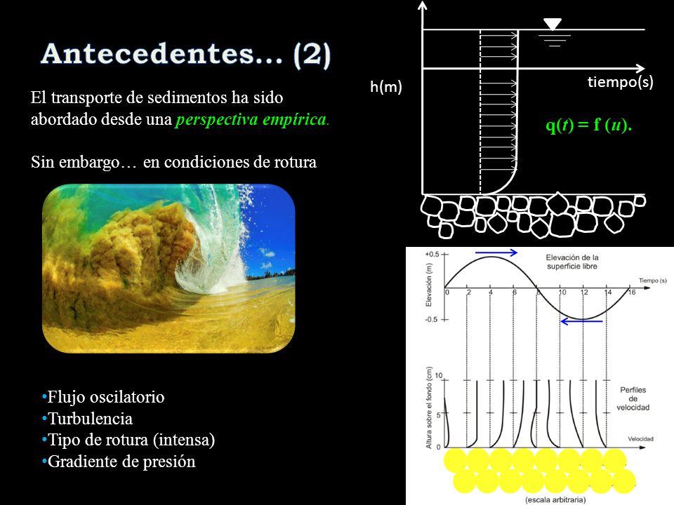 El transporte de sedimentos ha sido abordado desde una perspectiva empírica. Sin embargo… en condiciones de rotura Flujo oscilatorio Turbulencia Tipo