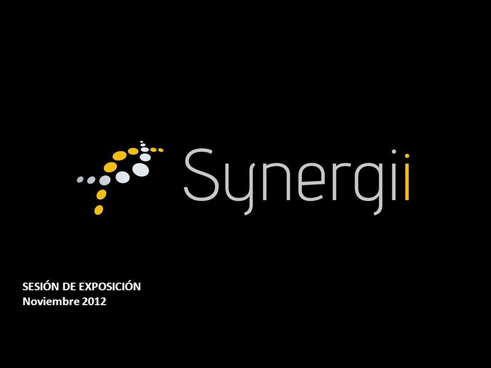 ¿ Qué hace Synergii .