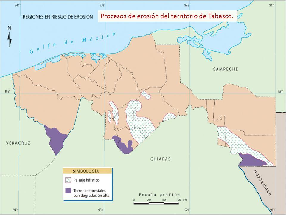 Distribución de los tipos de climas en el Estado.