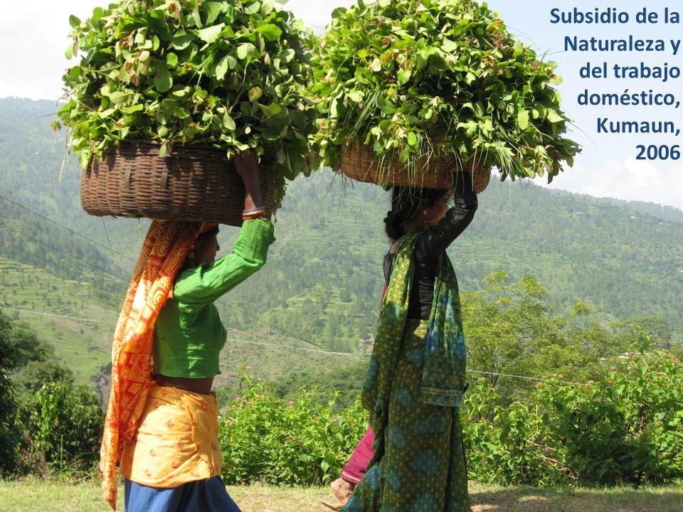Subsidio de la Naturaleza y del trabajo doméstico, Kumaun, 2006