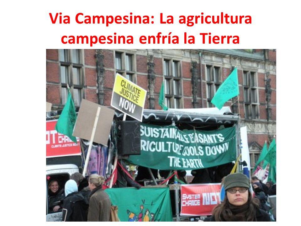 Via Campesina: La agricultura campesina enfría la Tierra