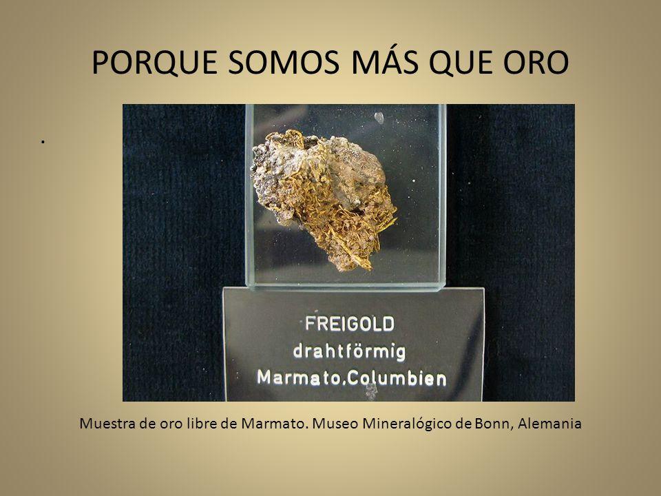 PORQUE SOMOS MÁS QUE ORO. Muestra de oro libre de Marmato. Museo Mineralógico de Bonn, Alemania