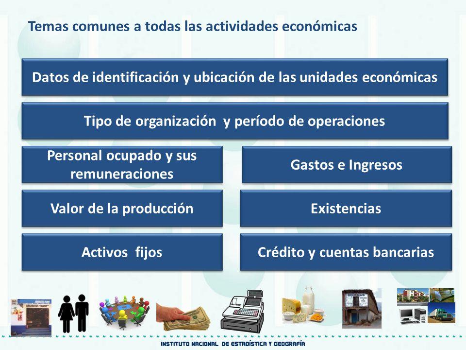 Temas comunes a todas las actividades económicas Datos de identificación y ubicación de las unidades económicas Tipo de organización y período de oper