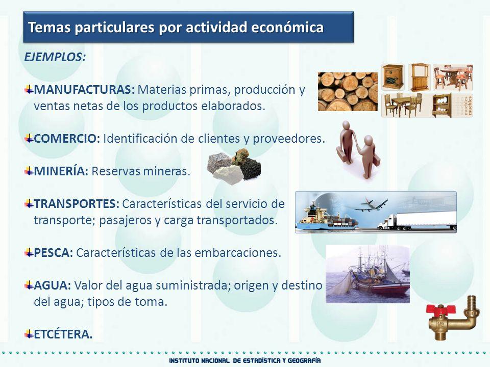 Temas particulares por actividad económica EJEMPLOS: MANUFACTURAS: Materias primas, producción y ventas netas de los productos elaborados. COMERCIO: I