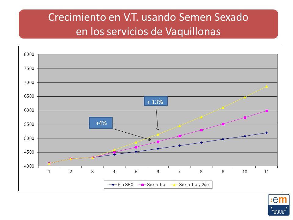 Crecimiento en V.T. usando Semen Sexado en los servicios de Vaquillonas +4%