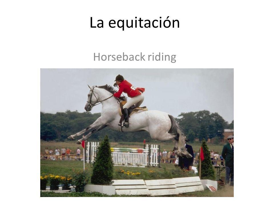 La equitación Horseback riding