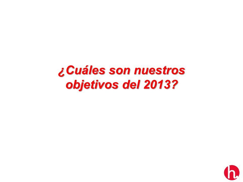 ¿Cuáles son nuestros objetivos del 2013?