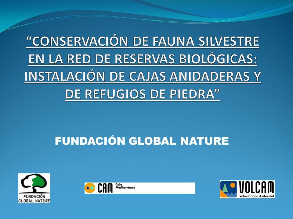 ZONA DE ACTUACIÓN: RED DE RESERVAS BIOLÓGICAS SITUADAS EN LA SIERRA DE LA ALMENARA-CARRASQUILLA (LORCA, ÁGUILAS Y MAZARRÓN, EN LA REGIÓN DE MURCIA), EN EL CABEZO DE LA JARA (PUERTO LUMBRERAS, REGIÓN DE MURCIA, VÉLEZ RUBIO Y HUÉRCAL OVERA, ALMERÍA) Y SIERRA DE LOS FILABRES (TAHAL, ALMERÍA)