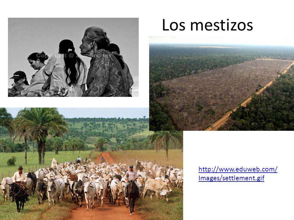 Los mestizos http://www.eduweb.com/ Images/settlement.gif