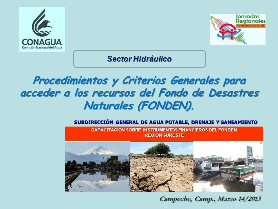 Campeche, Camp., Marzo 14/2013 Campeche, Camp., Marzo 14/2013 CAPACITACION SOBRE INSTRUMENTOS FINANCIEROS DEL FONDEN REGIÓN SURESTE Procedimientos y C