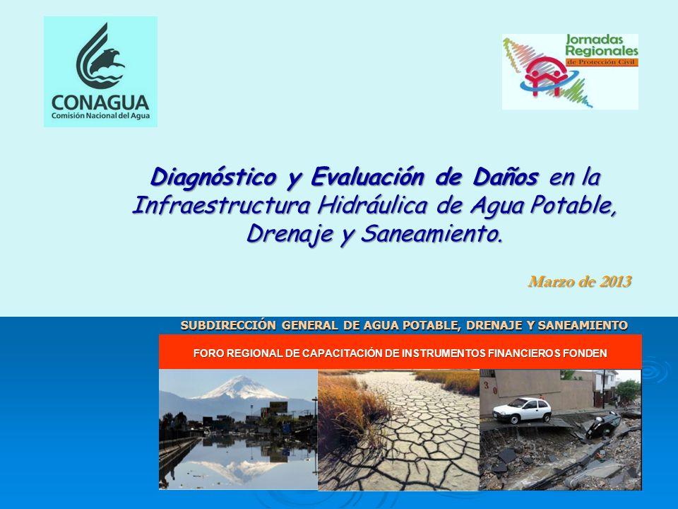 Marzo de 2013 FORO REGIONAL DE CAPACITACIÓN DE INSTRUMENTOS FINANCIEROS FONDEN Diagnóstico y Evaluación de Daños en la Infraestructura Hidráulica de A