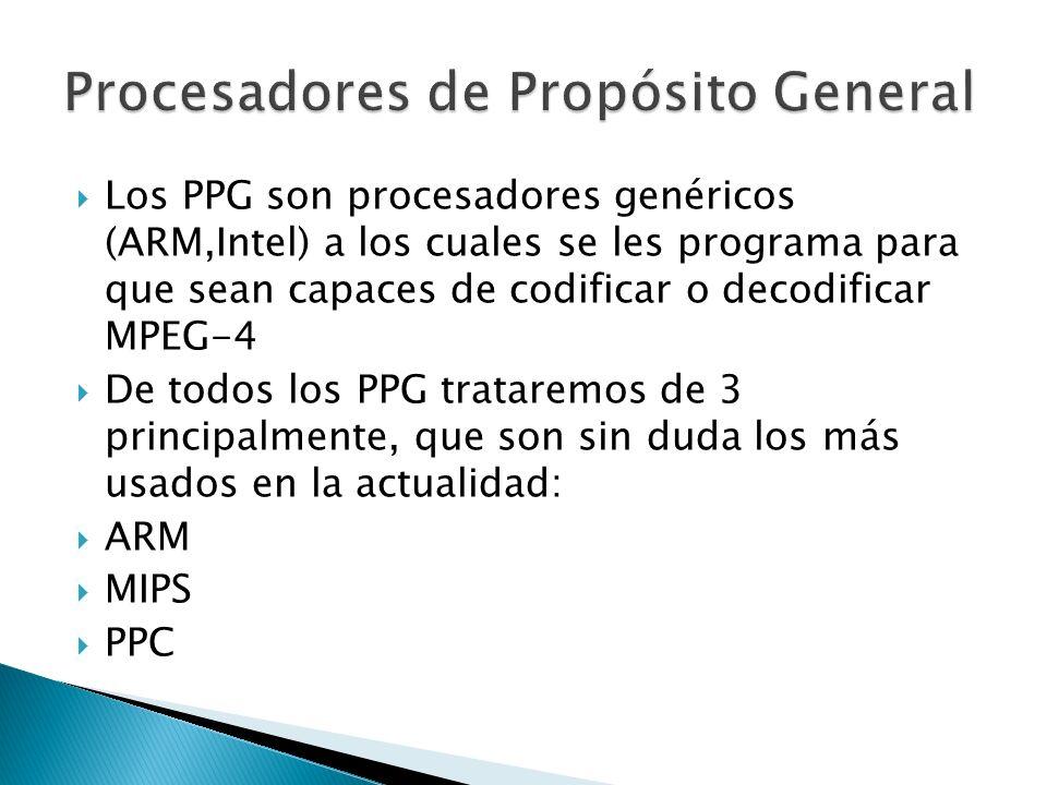 Los PPG son procesadores genéricos (ARM,Intel) a los cuales se les programa para que sean capaces de codificar o decodificar MPEG-4 De todos los PPG trataremos de 3 principalmente, que son sin duda los más usados en la actualidad: ARM MIPS PPC