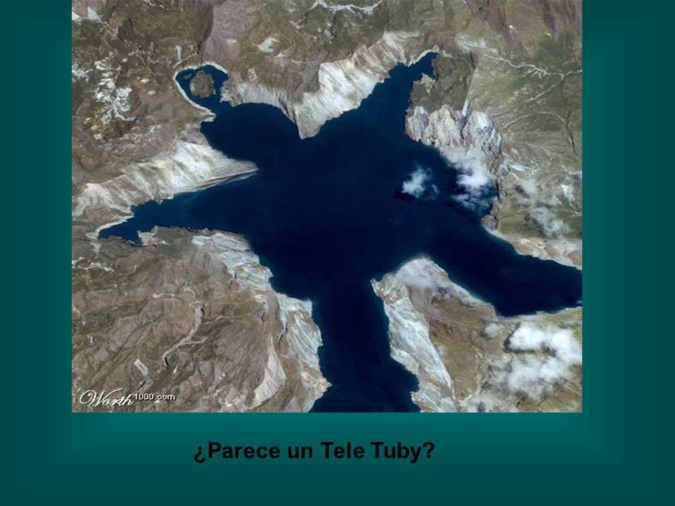 ¿Parece un Tele Tuby?