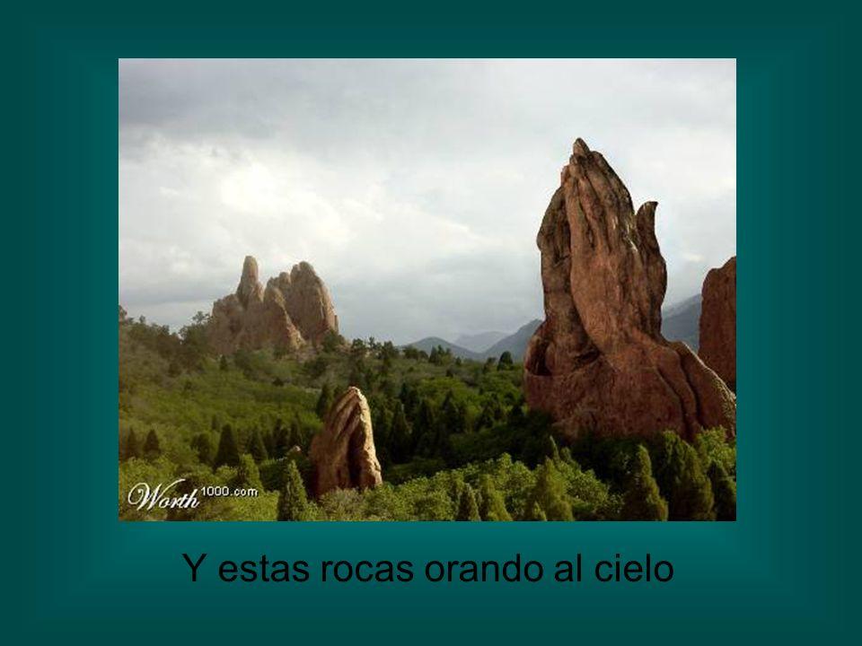 Y estas rocas orando al cielo