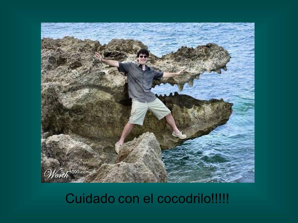 Cuidado con el cocodrilo!!!!!