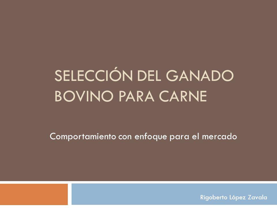 SELECCIÓN DEL GANADO BOVINO PARA CARNE Comportamiento con enfoque para el mercado Rigoberto López Zavala