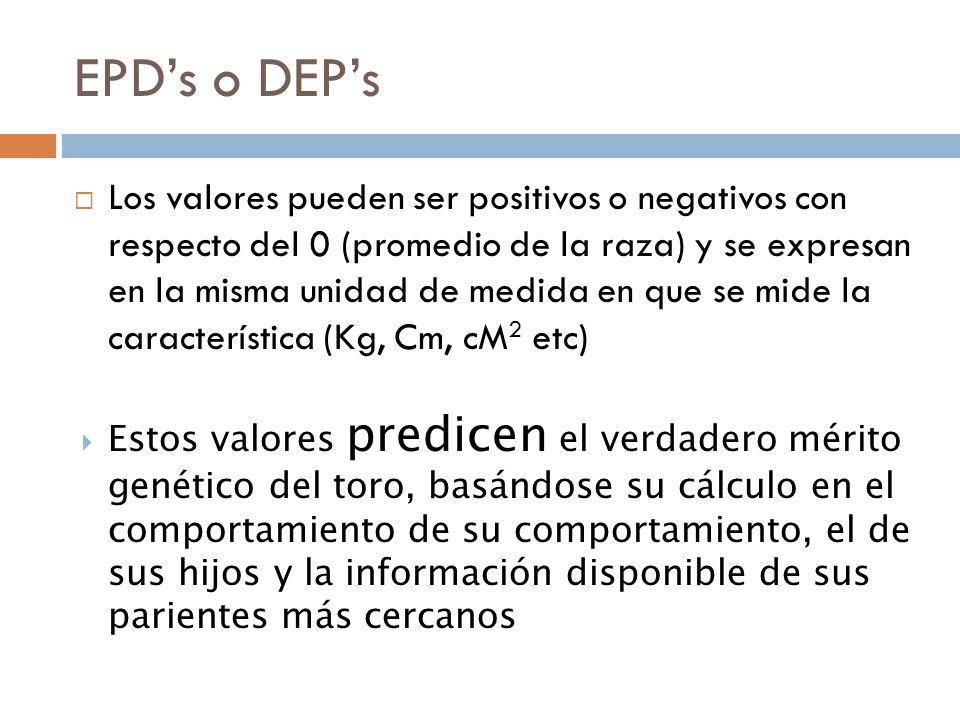 Características que toman en cuenta las diferentes asociaciones de criadores para cálculo de EPDs 1.
