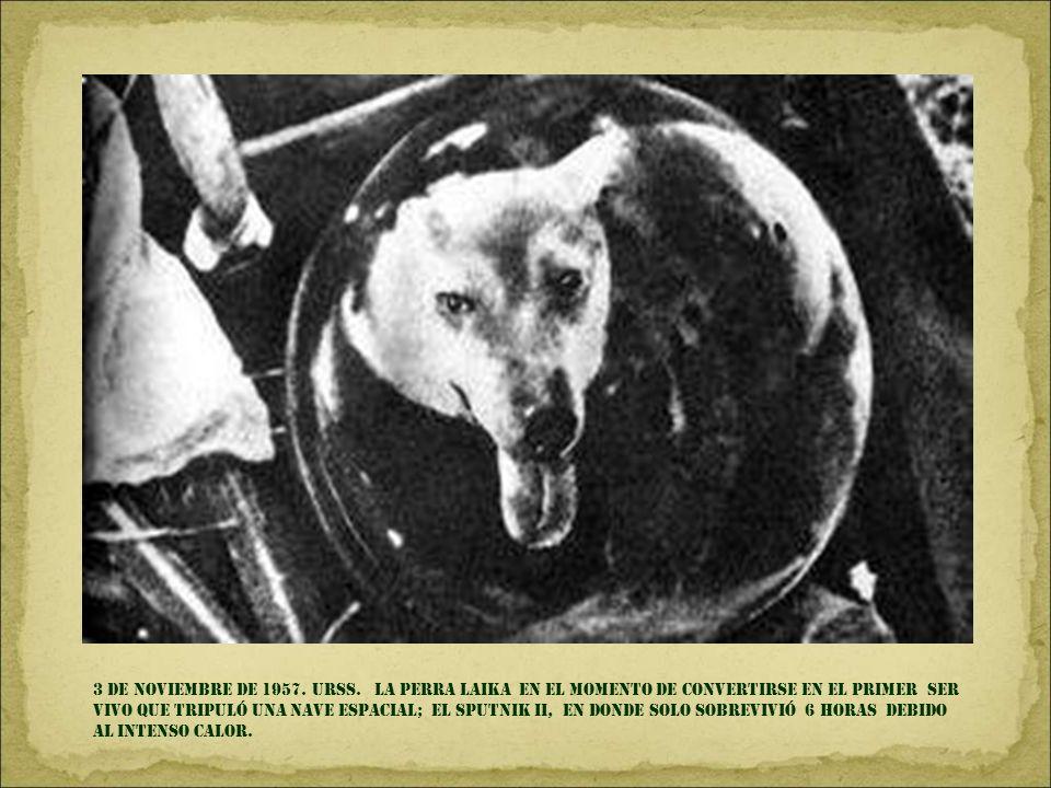4 DE SEPTIEMBRE DE 1957. LITTLE Rock, Arkansas. Elizabeth Eckford ES acosada AL IR AL COLEGIO, después de que la corte decretó EL FIN DE la segregació