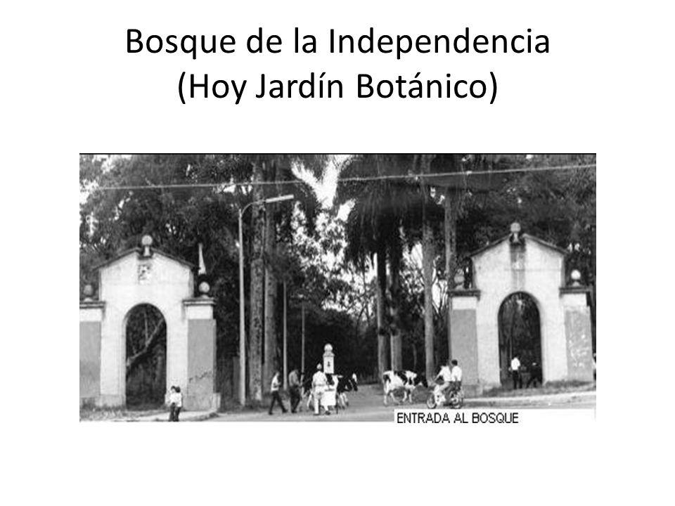 Bosque de la Independencia (Hoy Jardín Botánico)