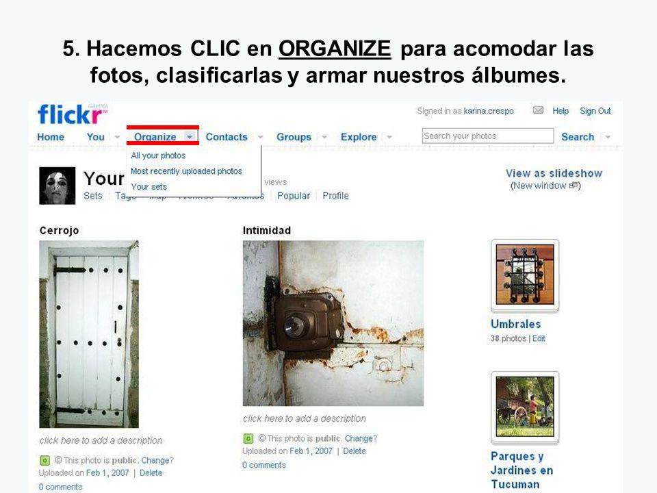 5. Hacemos CLIC en ORGANIZE para acomodar las fotos, clasificarlas y armar nuestros álbumes.