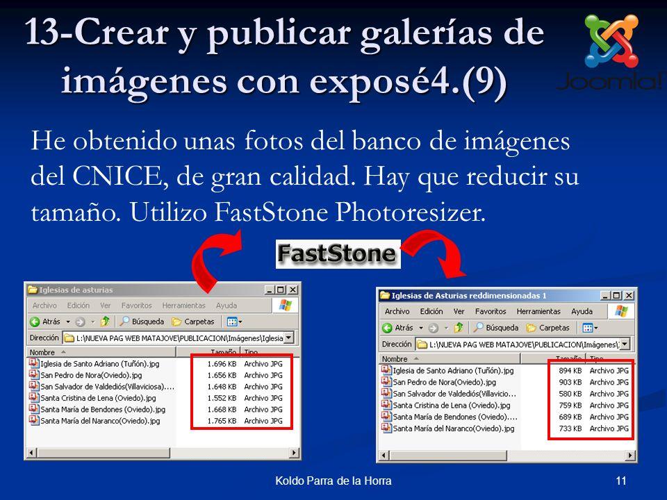 11Koldo Parra de la Horra 13-Crear y publicar galerías de imágenes con exposé4.(9) He obtenido unas fotos del banco de imágenes del CNICE, de gran cal
