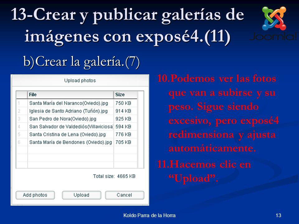 13Koldo Parra de la Horra 13-Crear y publicar galerías de imágenes con exposé4.(11) 10.Podemos ver las fotos que van a subirse y su peso. Sigue siendo