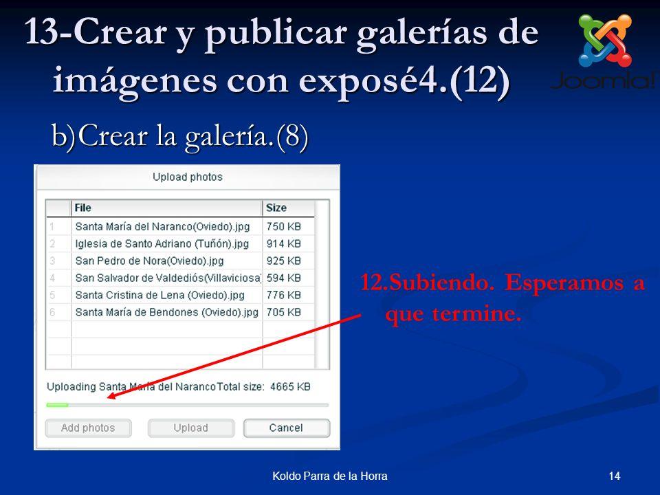 14Koldo Parra de la Horra 13-Crear y publicar galerías de imágenes con exposé4.(12) 12.Subiendo. Esperamos a que termine. b)Crear la galería.(8)