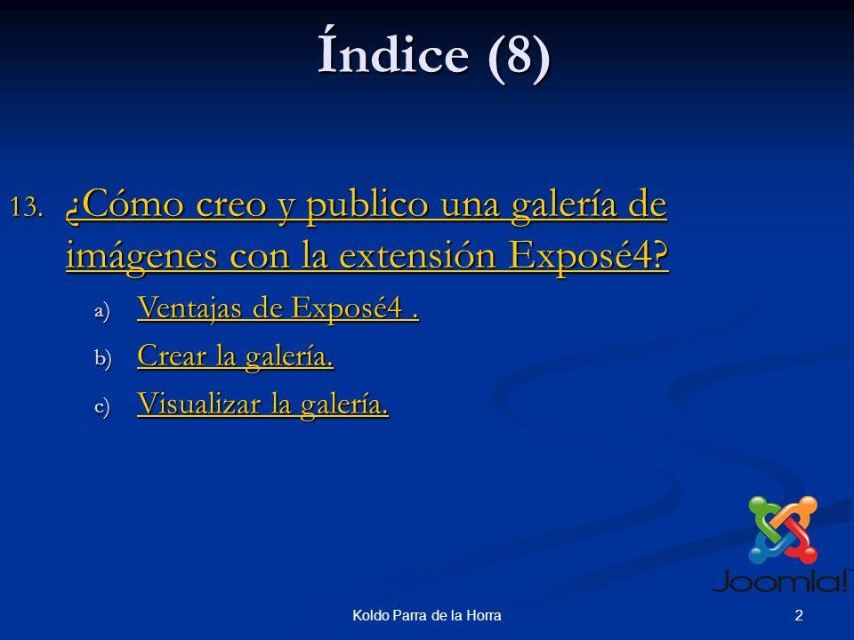 13Koldo Parra de la Horra 13-Crear y publicar galerías de imágenes con exposé4.(11) 10.Podemos ver las fotos que van a subirse y su peso.
