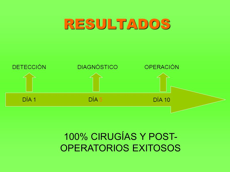 RESULTADOS DÍA 1DÍA 5 DÍA 10 DETECCIÓN DIAGNÓSTICO OPERACIÓN 100% CIRUGÍAS Y POST- OPERATORIOS EXITOSOS