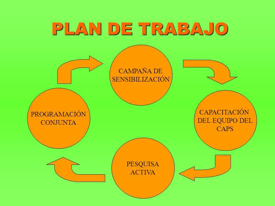 PLAN DE TRABAJO PESQUISA ACTIVA CAMPAÑA DE SENSIBILIZACIÓN PROGRAMACIÓN CONJUNTA CAPACITACIÓN DEL EQUIPO DEL CAPS