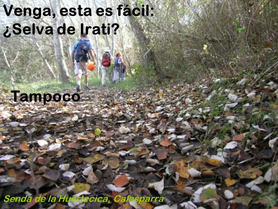 Esta sí que no la aciertas Prados floridos en la orilla del Segura Jaén