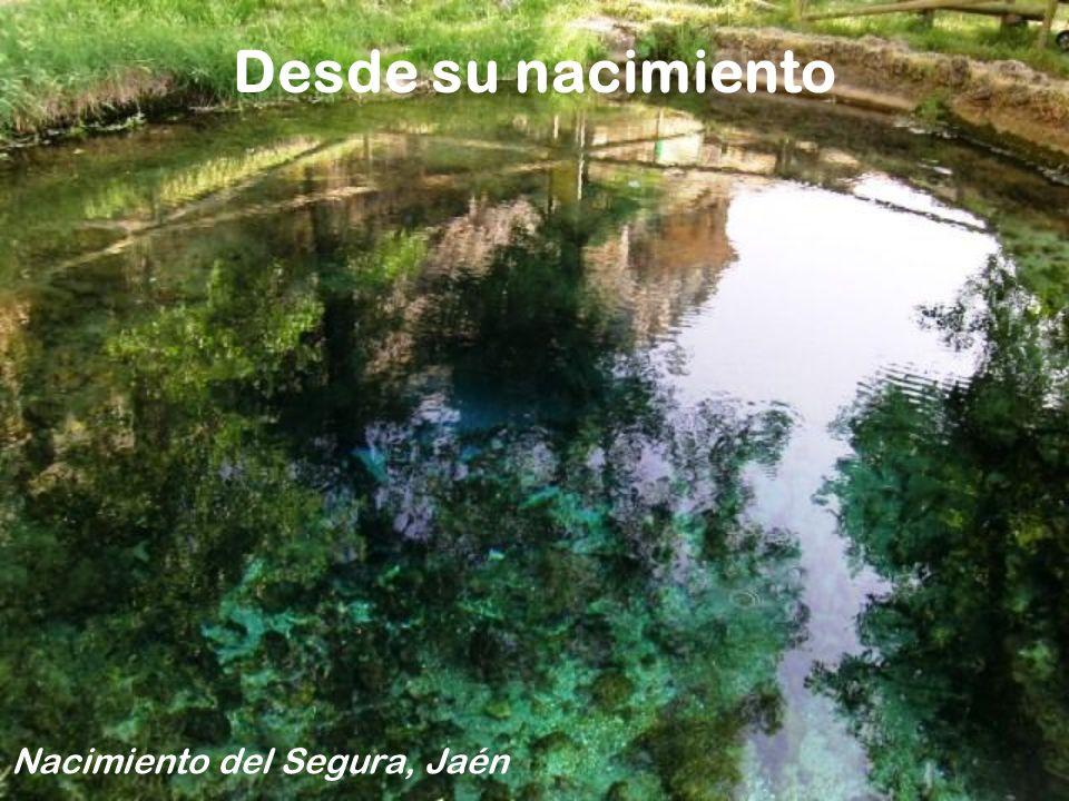 Y la cuenca del Segura no tiene nada que envidar a otros paisajes Valle de Ricote
