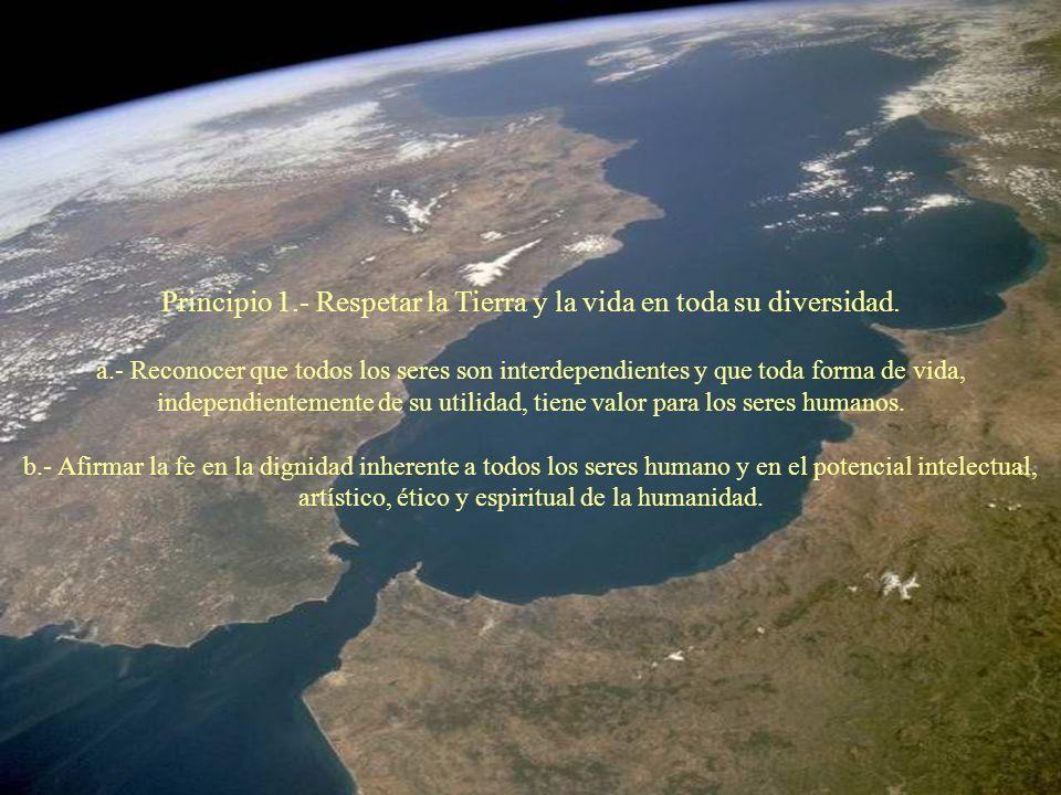 Principio 1.- Respetar la Tierra y la vida en toda su diversidad. a.- Reconocer que todos los seres son interdependientes y que toda forma de vida, in